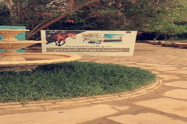شطر الطالبات ينظم زيارة لنادي الأغر للفروسية